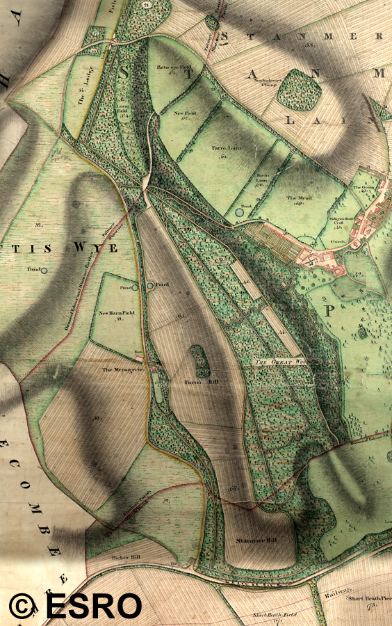 1800 Map of Coldean